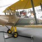 Tiger Moth 01
