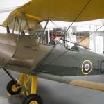 Tiger Moth 02