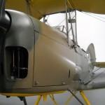 Tiger Moth 03